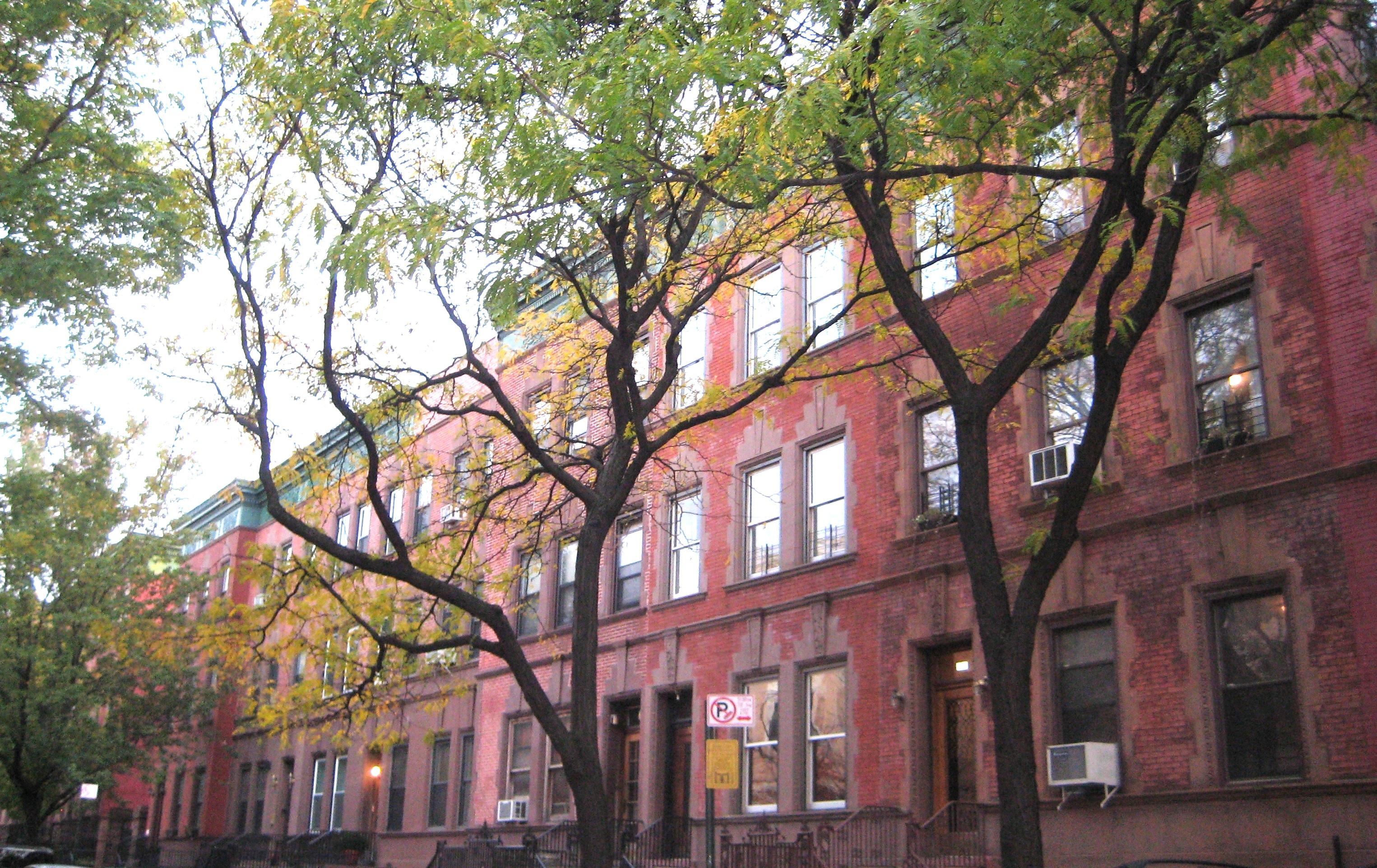 Old Harlem Streets Ephemeral New York