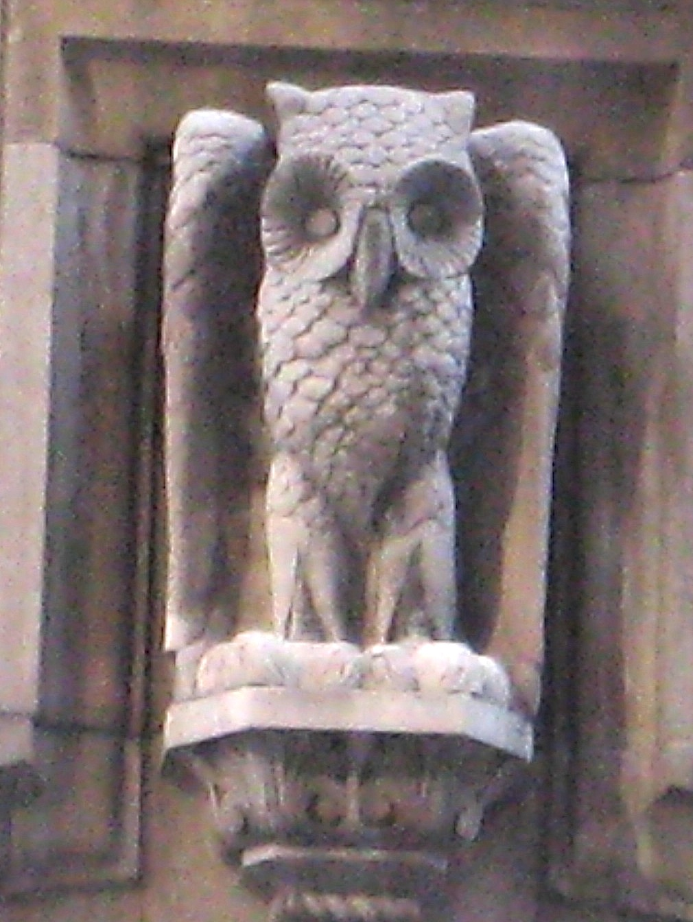 The owls that adorn new york city ephemeral