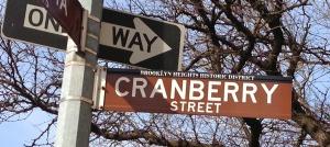 Cranberrystreetsign