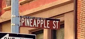 Peneapplestreetsign2