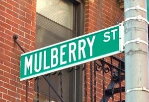Mulberrystreetsign