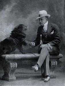 Evanderberrywallchowdog