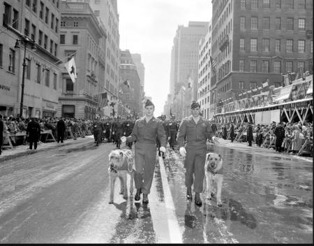 Stpatricksdayparade1956
