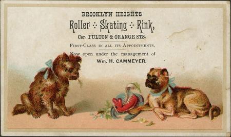 Rollerrinkbrooklynheights