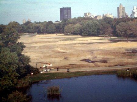 Centralparkgreatlawn1970s