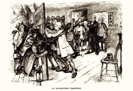 Doctorsriotharpers1882