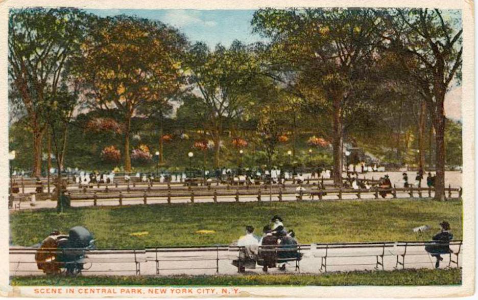 Central Park Benches Ephemeral New York