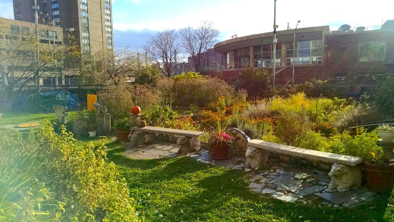 Bellevue Sobriety Garden | Ephemeral New York